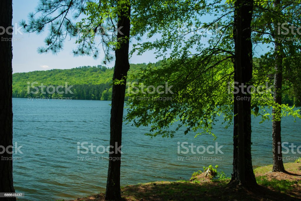 Lake Guntersville in Alabama photo libre de droits
