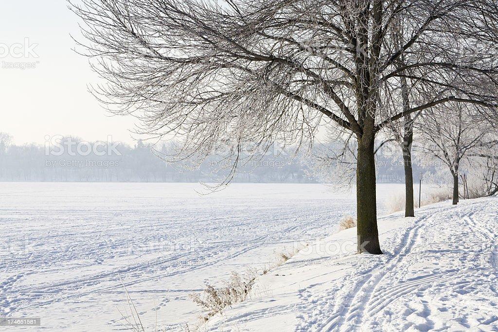Lake Harriet Winter royalty-free stock photo