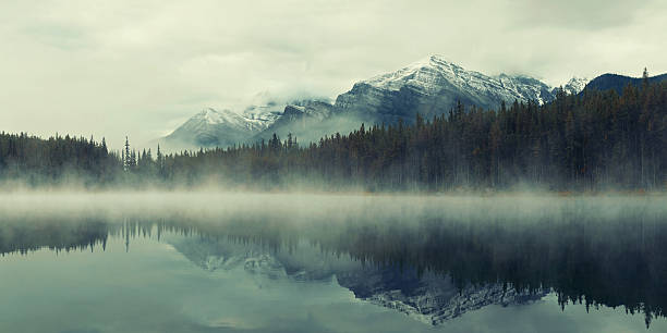 Lake Herbert stock photo