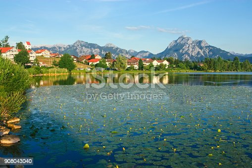istock Lake Hopfensee with waterlilies in summer near village of Hopfen, in the background Ammergauer Alps mountain range visible with Tegelberg and Säuling, Eastern Allgäu, Bavaria, Germany 908043040
