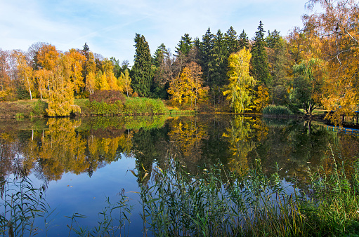 istock Lake in  autumn park. 1150332064