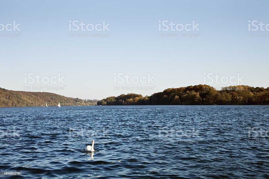 lake in autumn stock photo