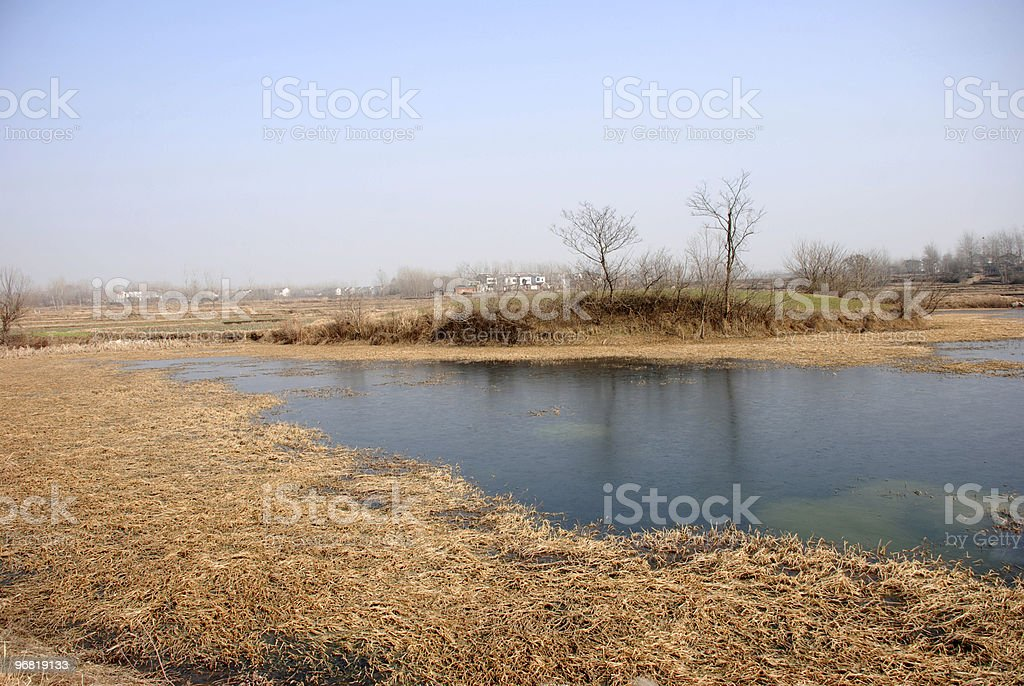 lake in country stock photo