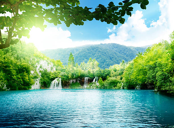 lake in deep forest - waterfall stock photos and pictures