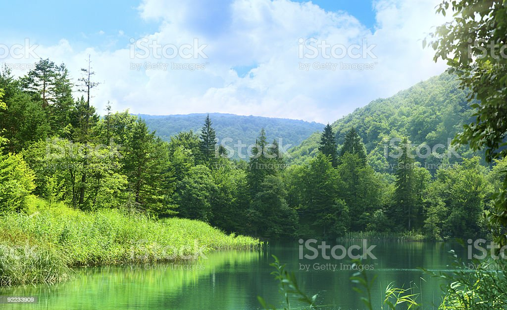 lake in deep forest royalty-free stock photo