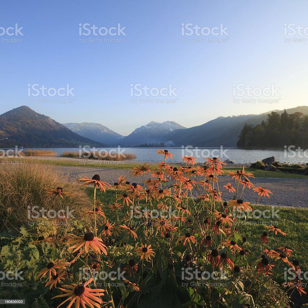 Lake in Evening Light stock photo