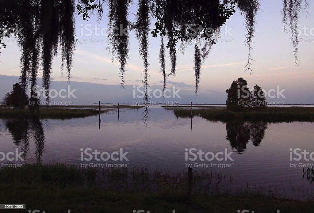 lake in florida stock photo