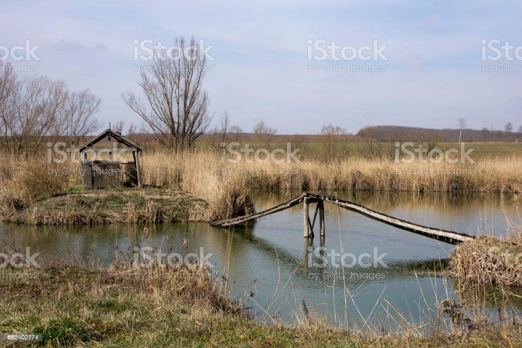 Lake in Hungary royalty-free stock photo