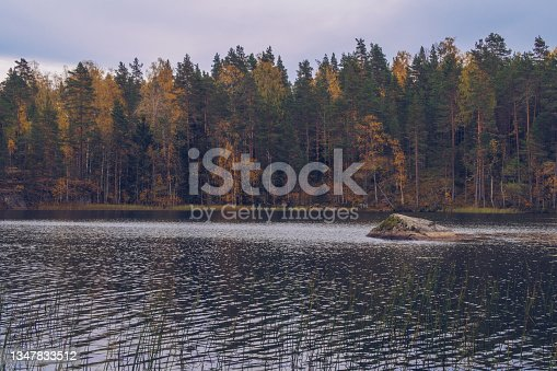 istock Lake in Karelia among larch trees, Russia. Beautiful autumn season landscape with river and forest stock photography 1347833512