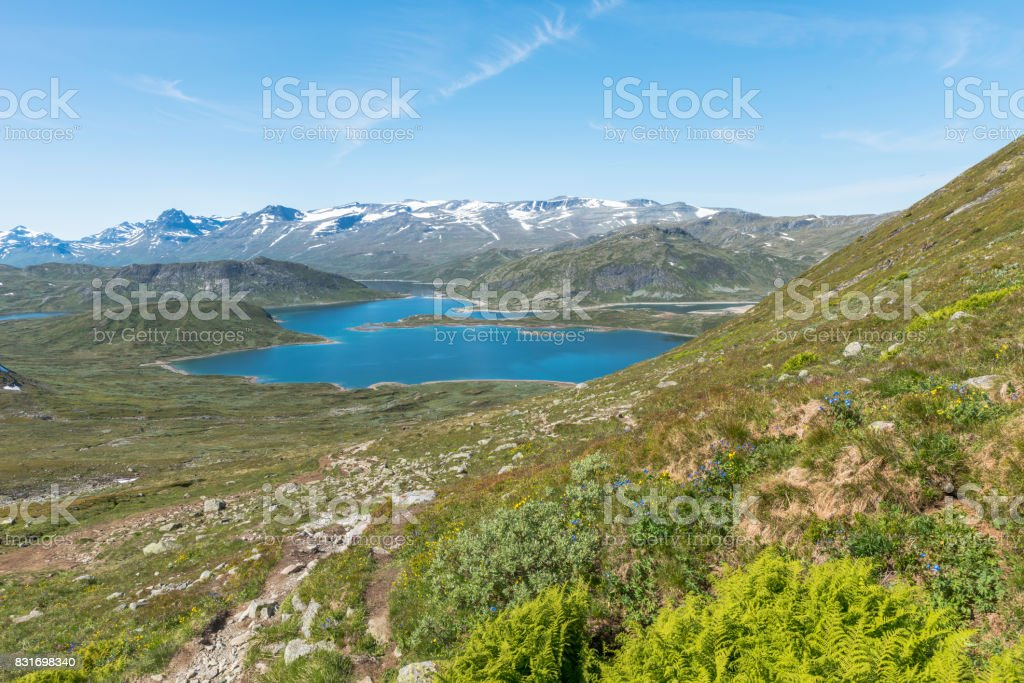 lake in national park in norway stock photo