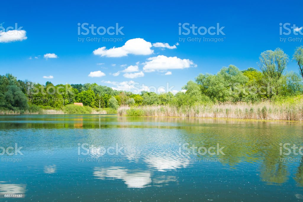 Lake in nature park Lonjsko polje, Croatia royalty-free stock photo