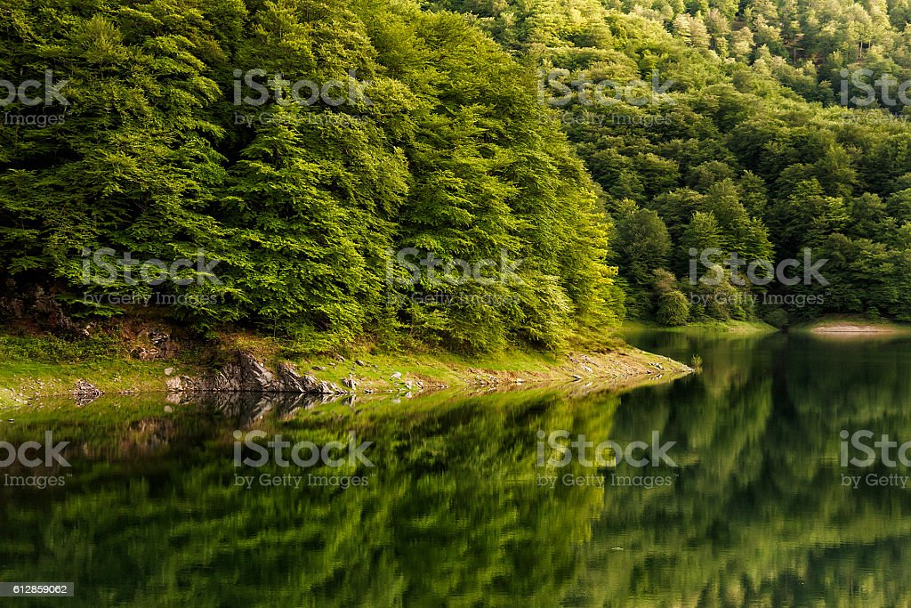 lake in navarra - foto de stock