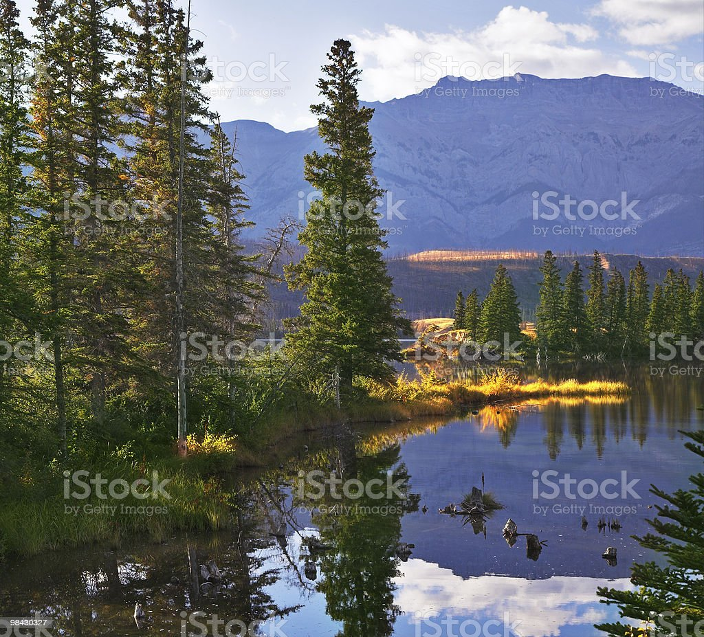 Lake in one fine morning royalty-free stock photo