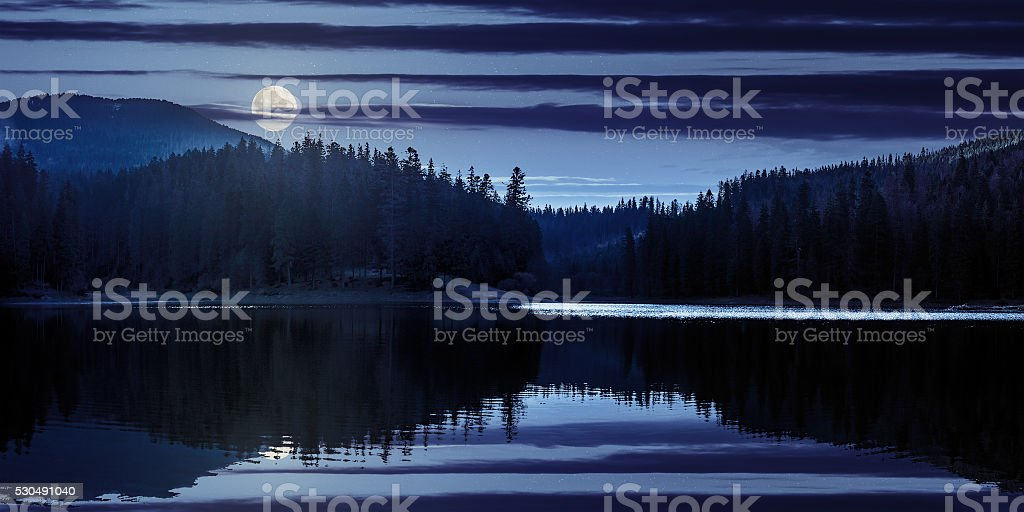 lake in pine forest near the mountain  at night stock photo