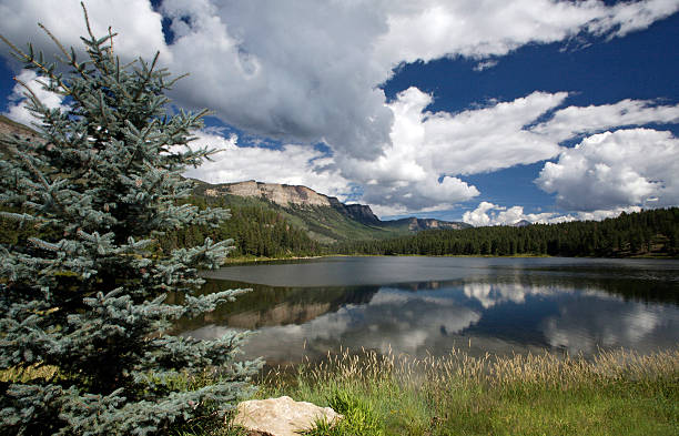 lake in San Juan-Gebirge, Colorado – Foto