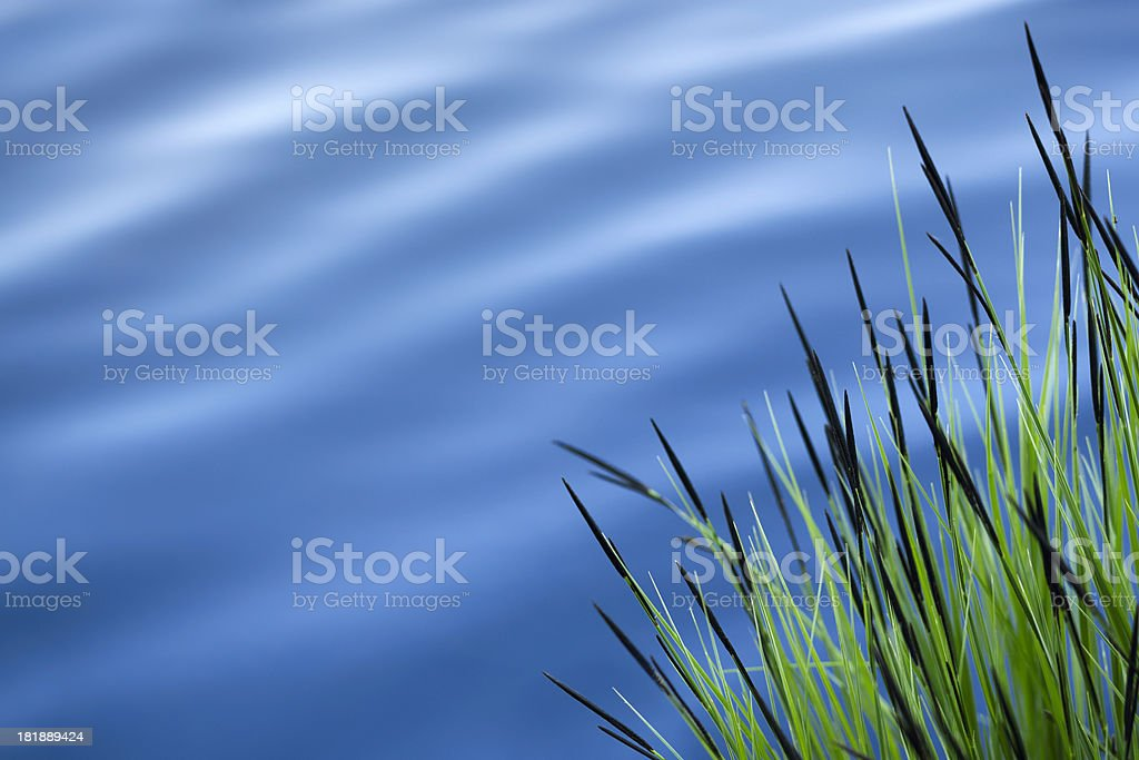 Lake in spring royalty-free stock photo