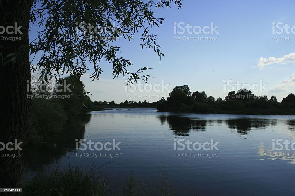 Lake in the evening stock photo