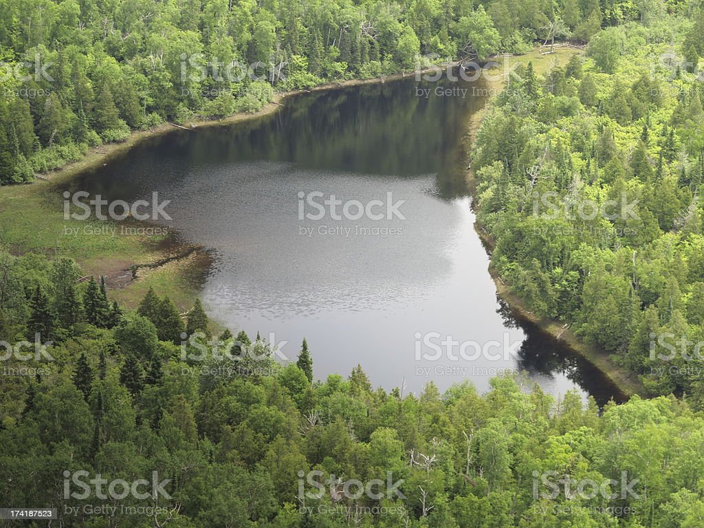 Lake in the Forest royalty-free stock photo