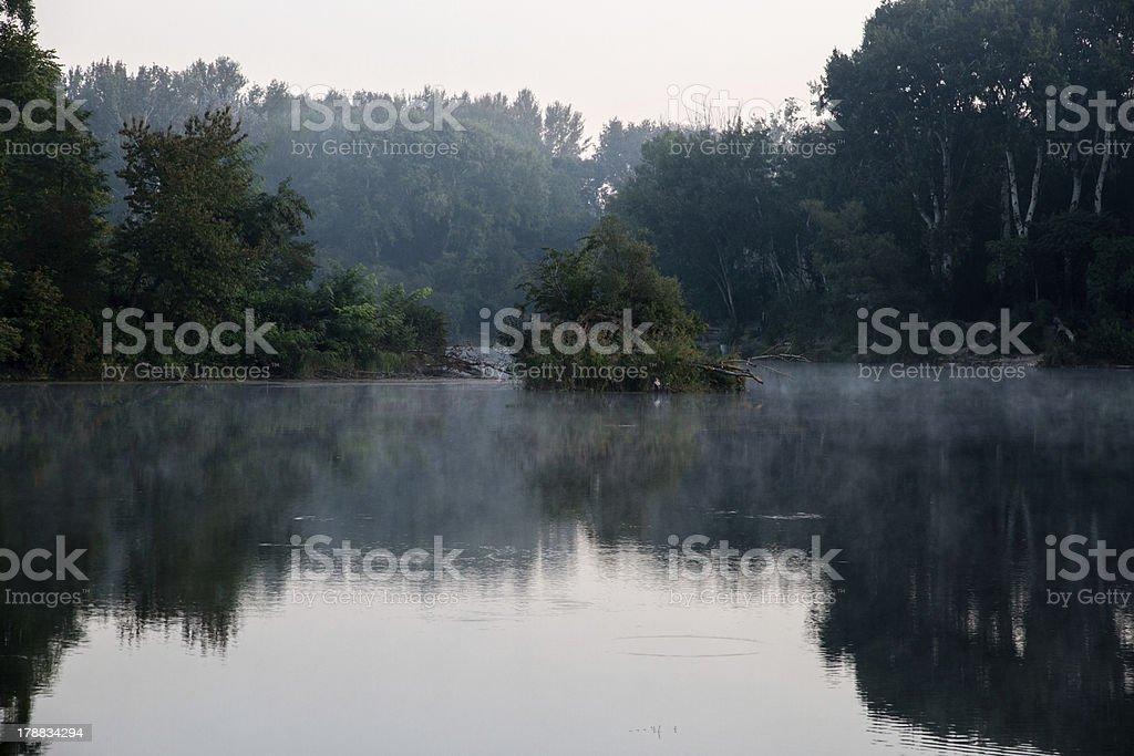 Lake in the Lobau stock photo