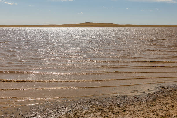 lake in the mongolian steppe stock photo