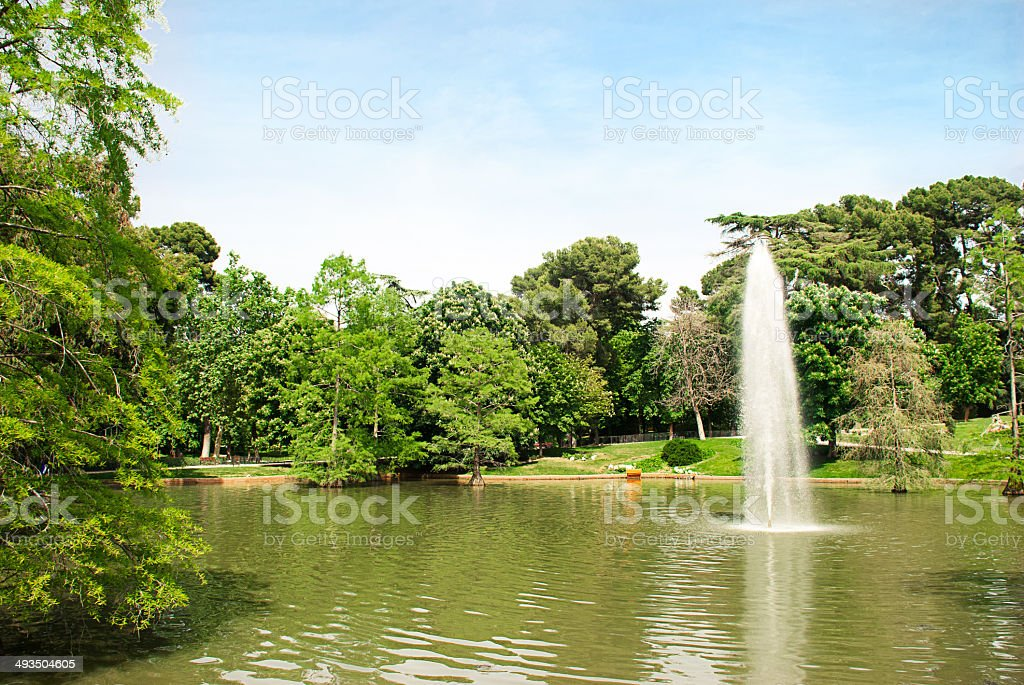 Lake in the park. stock photo