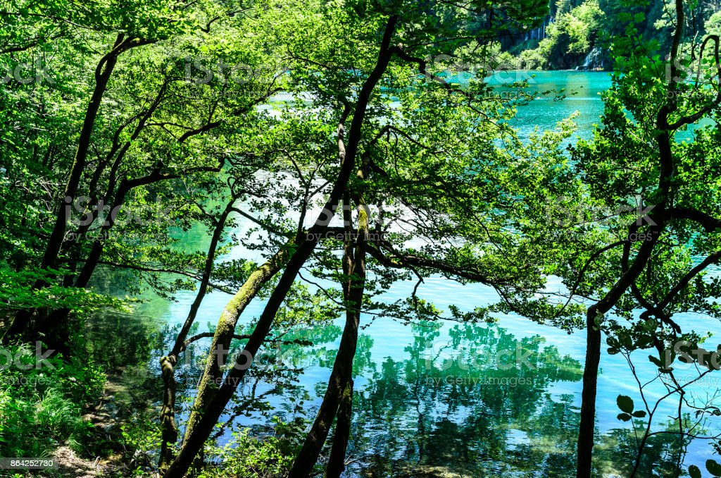 Lake in the Plitvice National Park. royalty-free stock photo