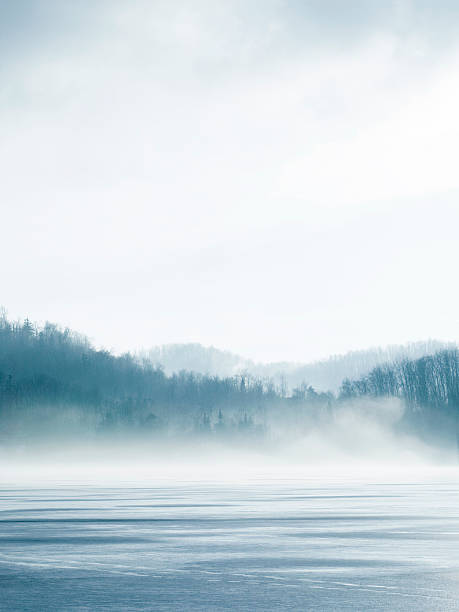 lake in winter - trees in mist stock pictures, royalty-free photos & images