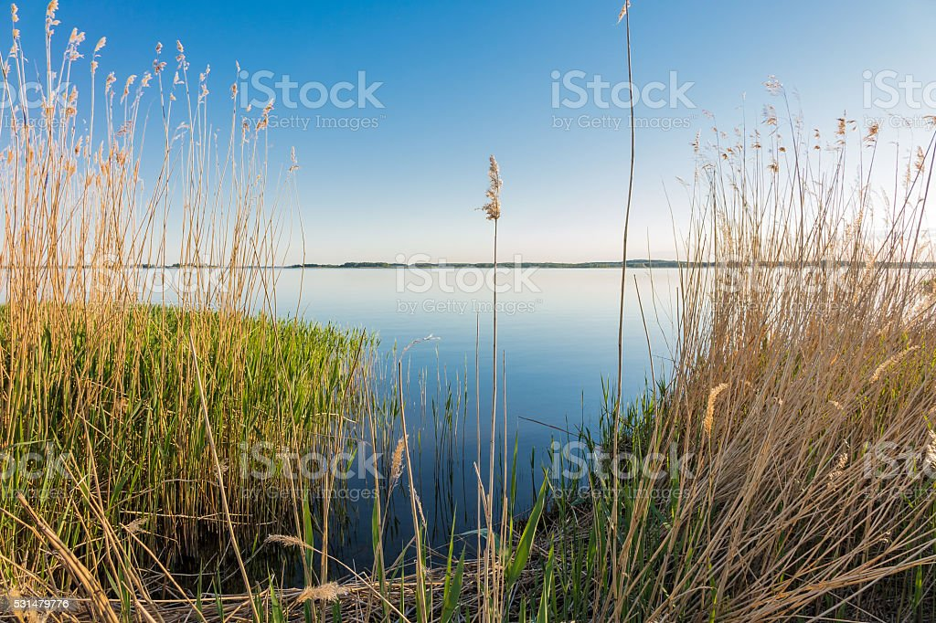 Lake in Zempin on the island Usedom stock photo