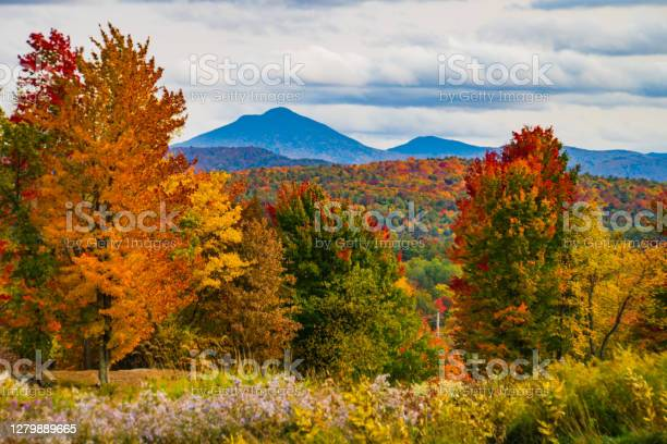 Photo of Lake Iroquois in Vermont