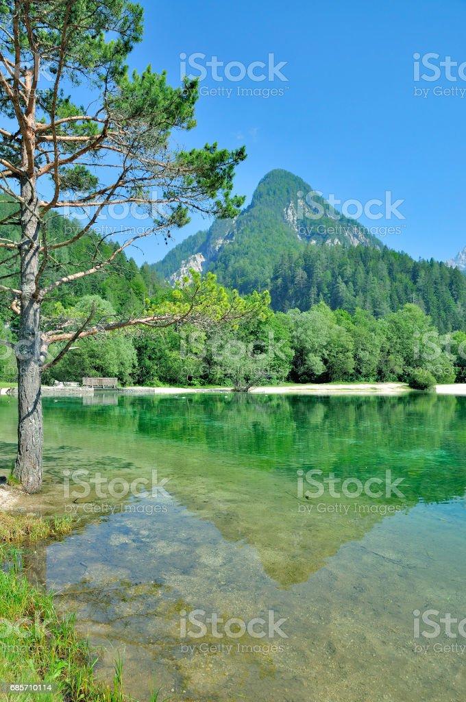 湖ジャスナ、クランスカ ・ ゴーラ トリグラフ国立公園、スロベニア ロイヤリティフリーストックフォト
