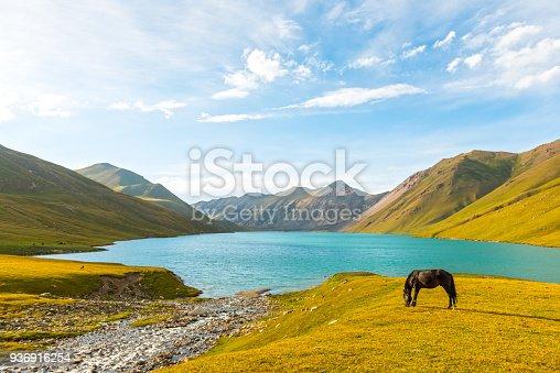 istock Lake Kol-Ukok 936916254