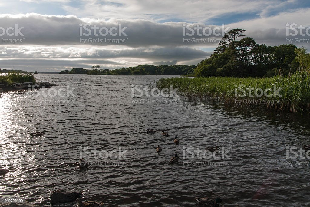 Lake Leane near Ross Castle stock photo