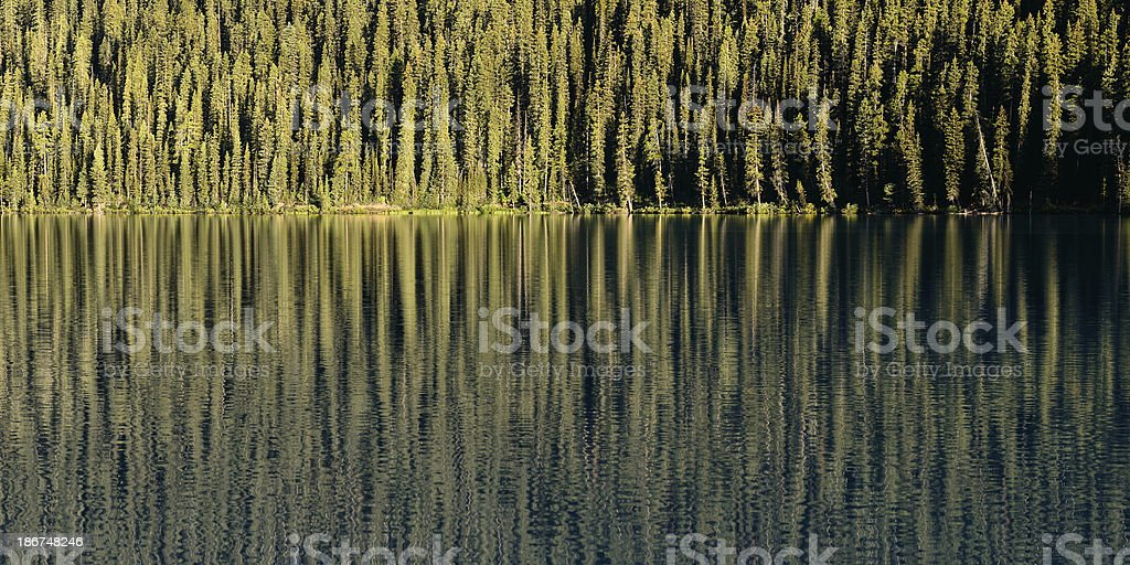Lake Louise Reflection stock photo