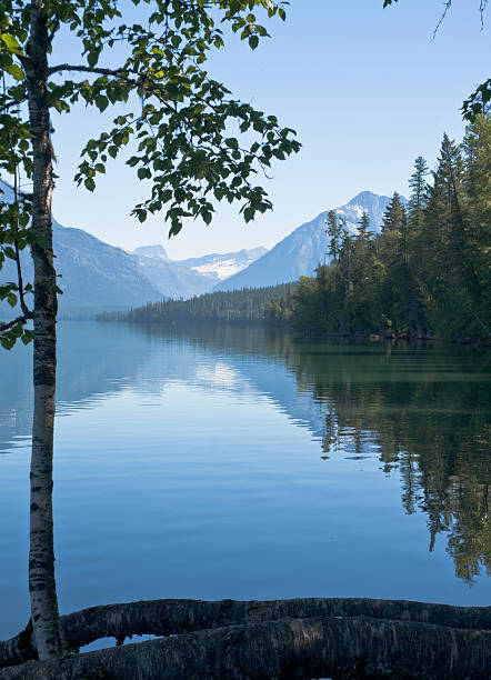 lake mcdonald, glacier national park - mcdonald lake stock pictures, royalty-free photos & images