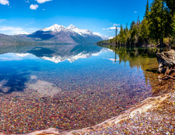 lake mcdonald in glacier national park - mcdonald lake stock pictures, royalty-free photos & images