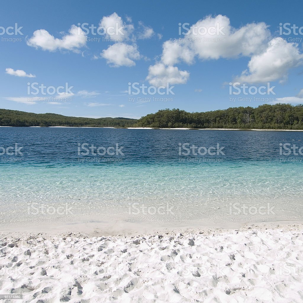 Fraser Island Australia: Lake Mckenzie Fraser Island Stock Photo