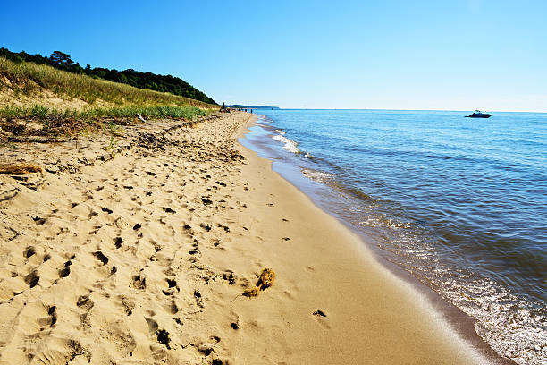 lake michigan beach, saugatuck dunes state park - meeroever stockfoto's en -beelden