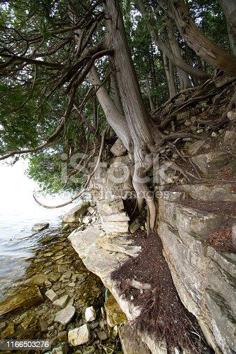 832047798istockphoto Lake Michigan Shore - Midwest USA 1166503276