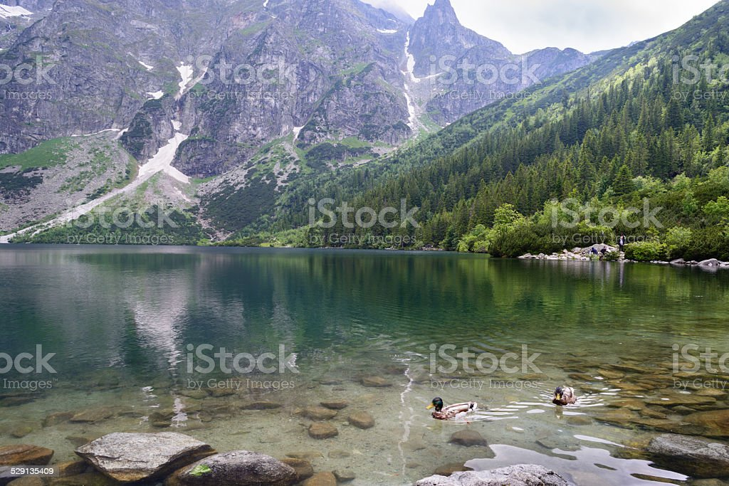 Lago Morskie Oko foto royalty-free