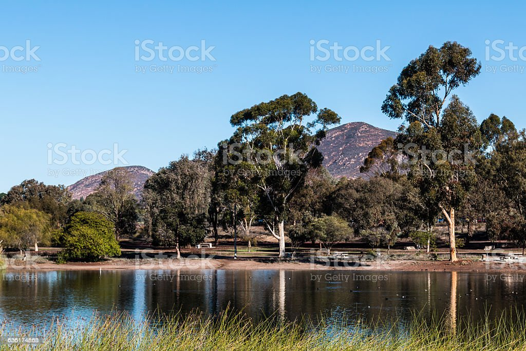 Lake Murray Trees with Cowles Mountain in San Diego stock photo