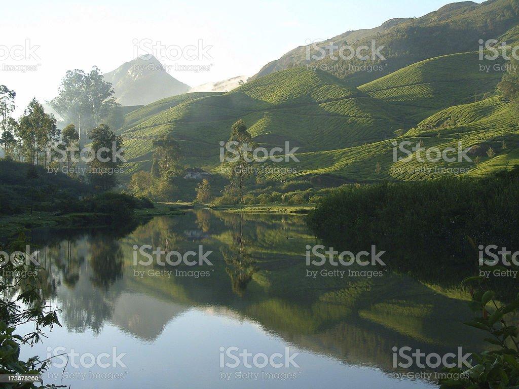 Lake near tea plantation royalty-free stock photo