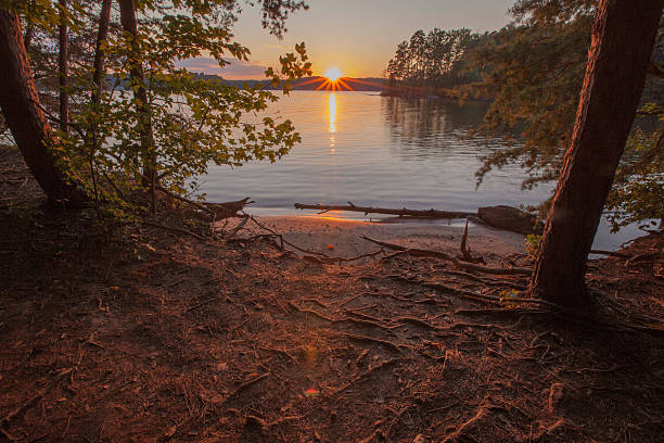 lake norman - lakeshore stock photos and pictures