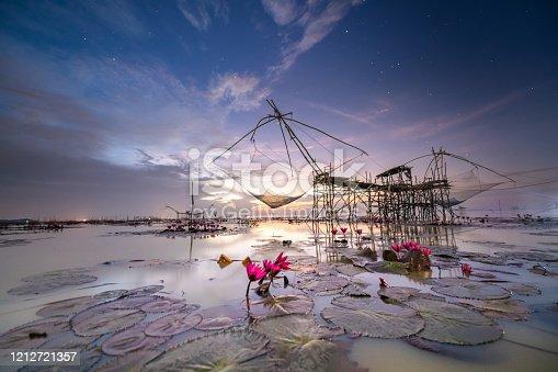 Lake of beautiful blooming pink lotus at Talay noi Lake national park, Pattalung songkhla , Thailand