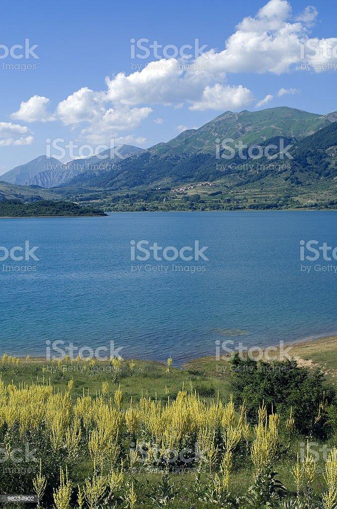 호수 Campotosto in 아브루치 (이탈리아) 에서 여름 royalty-free 스톡 사진