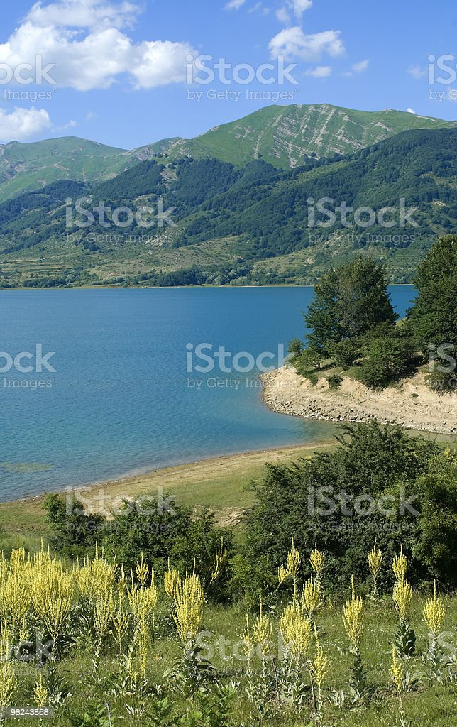 Lake of Campotosto in Abruzzi at summer royalty-free stock photo