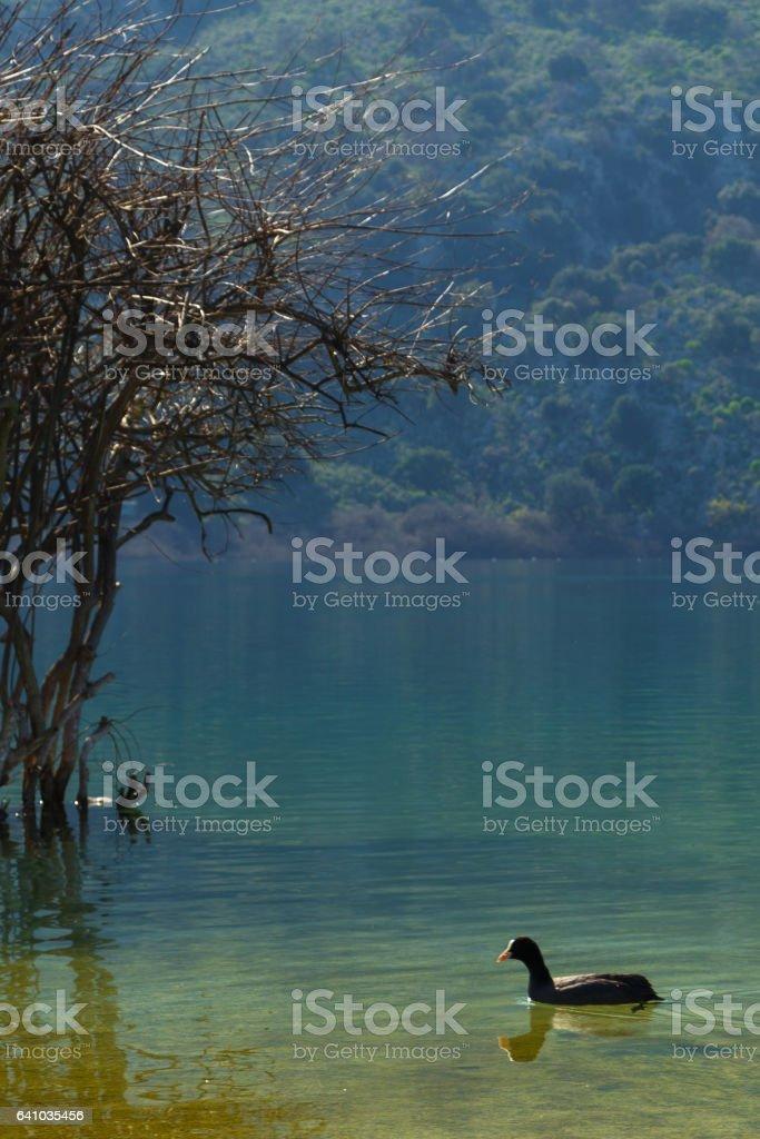 Lake of Kournas - Crete stock photo