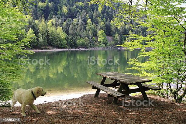 Photo of Lake of Ravens in the Vosges