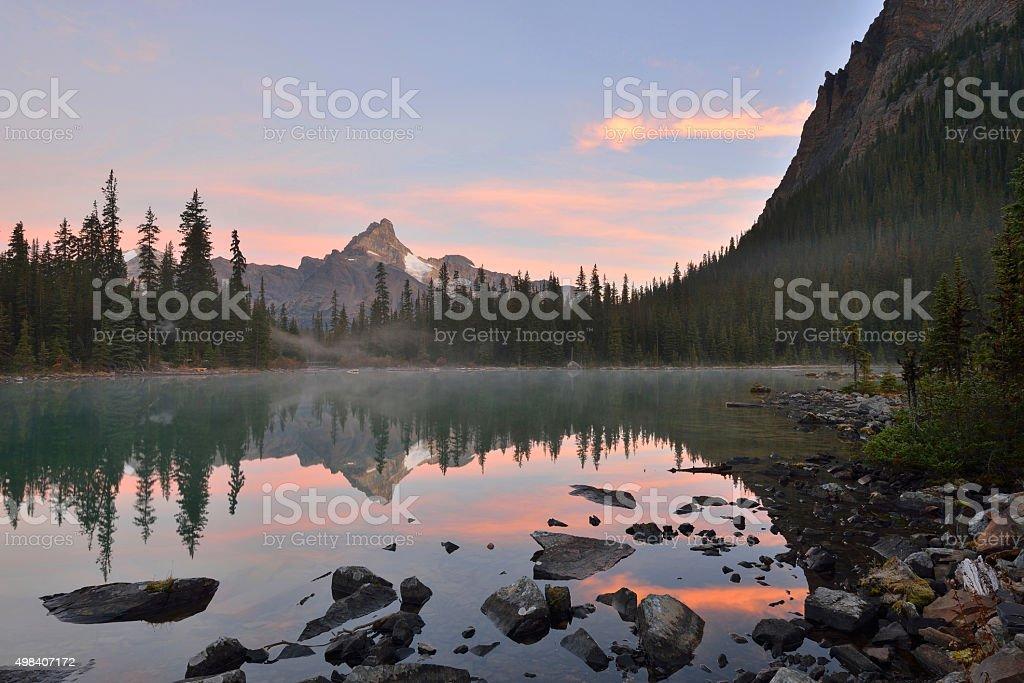 Lake O'Hara and Cathedral Mountain at sunrise stock photo