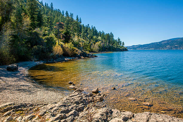 lake okanagan, british columbia - meeroever stockfoto's en -beelden