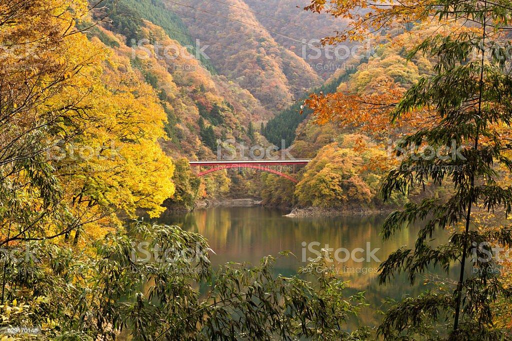 Lake Okutama and Kouran bridge in autumn ストックフォト
